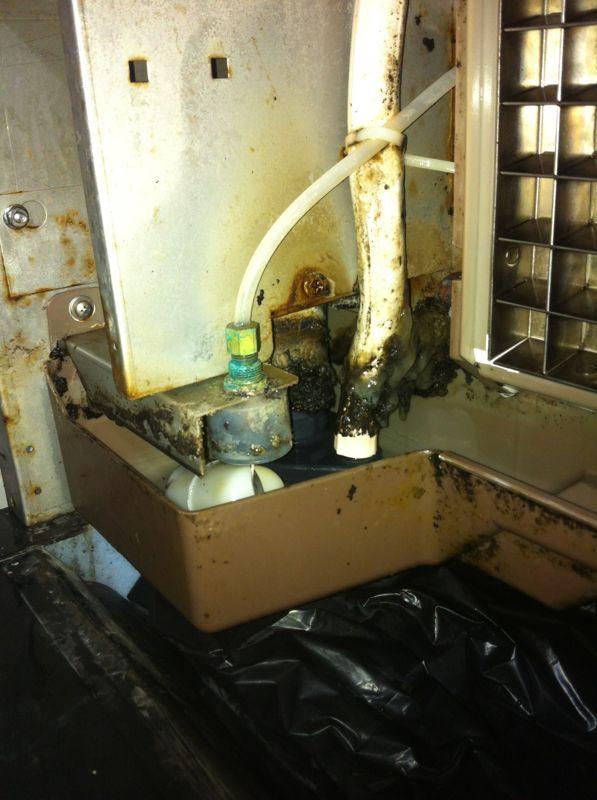 זיהום במכונות קרח מערכת מים